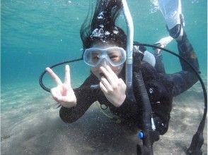 大分・田ノ浦ビーチ 体験ダイビング(水中写真プレゼント)の画像