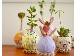 【栃木・高根沢町】プクプク&もこもこが可愛い♪「毛糸のコケ玉®」教室の画像