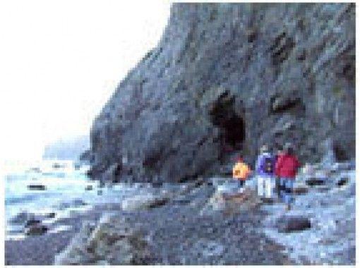 【岩手・田野畑】地層の化石に直に触れながら学べる!地層から歴史を学ぶ「たのはたジオパークガイド」(1時間)