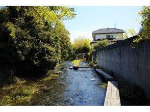 [靜岡/沼津,三島此外,在智能手機OK!在三島咿呀學語的照片散步的四季景觀的點擊圖片