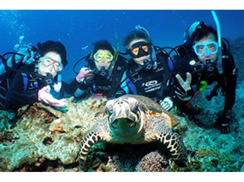 [沖繩那霸風扇潛水]慶良間FUN潛水1天計劃引入圖像的水下攝影禮物的嚮往