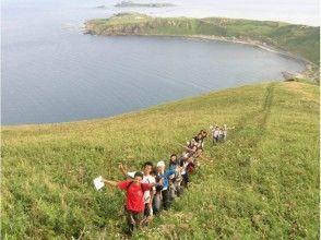 【北海道・礼文島】礼文島の魅力を満喫できるトレッキング(8時間コース)ガイド付き・送迎あり