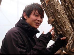 【岩手・大槌】団体さま大歓迎! 原木栽培のおいしいシイタケを収穫しよう!