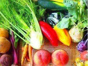 【神奈川県・足柄上郡】自然の恵みと景色がご馳走!新鮮野菜を採って味わうBBQ体験の画像