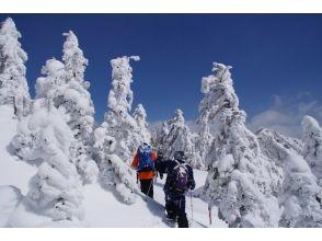 "[Nagano / Tateshina] Enjoy nature! Lots of charm! "" Snowshoes Nature Guided Tour"""