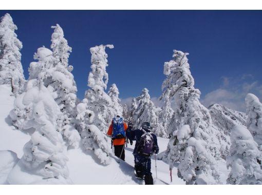 "[Nagano / Tateshina] Enjoy nature! Lots of charm! "" Snowshoes Nature Guided Tour""の紹介画像"