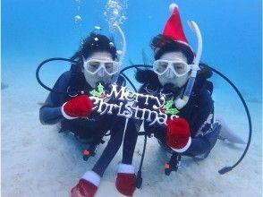 【沖縄・石垣島】半日体験ダイビング|水中写真プレゼント!