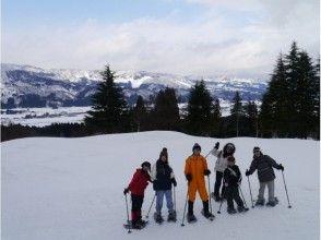 豪雪地帯「十日町」を探検スノーシューツアーの画像
