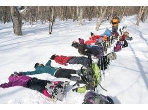 ◇◆◇日光国立公園 高原山で雪遊び!!森雪(しんせつ)スノーシュー&ハンモックランチ◇◆◇ 犬OK!