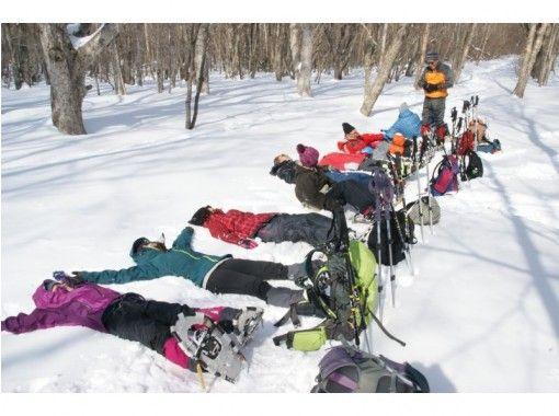 【栃木・矢板市】日光国立公園原山で雪遊び!森雪(しんせつ)スノーシュー&ハンモックランチ!犬もOK!