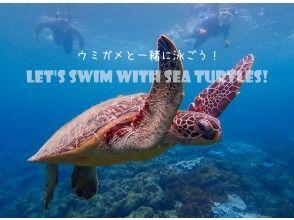 【屋久島 シュノーケリング】憧れのウミガメに会いたい!ウミガメと泳ぐシュノーケリングツアー!
