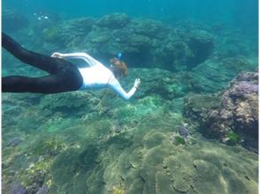 【東京・八丈島】海との一体感!素もぐりシュノーケリング体験の画像