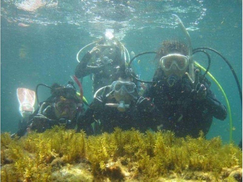 【福井・越前】越前ブルーの美しい海で体験ダイビングをしよう!たっぷり2ダイブプラン♪の紹介画像
