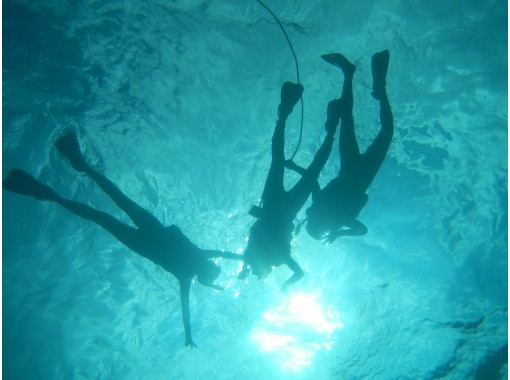 [Okinawa Ishigaki island] Blue cave and Churaumi Snorkeling experience! 1 hour casual course! [Available from 1 year old]の紹介画像