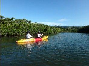 [Okinawa Ishigaki island] Kayak exploration of mangroves ☆ 1 hour casual course!