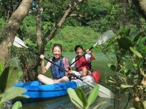 当日予約OK!【沖縄/嘉手納】ジャングルのように茂った比謝川で、マングローブカヤックツアー!