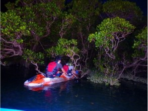 Reservation on the day OK! 【Okinawa / Kadena】 May be able to meet fireflies from April to November? Night kayak tour!