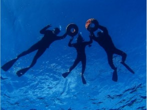【沖縄・石垣島】体験ダイビング+マンタシュノーケル+幻の島+サンゴお花畑シュノーケルの画像