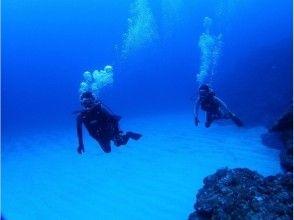 [โอะกินะวะอิชิกากิ] เพื่อนักดำน้ำเต็มรูปแบบ! Scuba Diver Course (3 วัน)