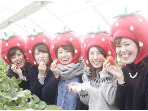 [Okayama Akaiwa] ภาพที่ระลึกกับหมวกสตรอเบอร์รี่ของการล่าสัตว์การให้กู้ยืมเงิน★สตรอเบอร์รี่ฟรีของภาพ