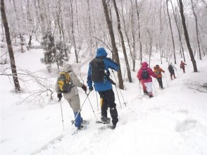 [Kyoto Ashioi] Kansai unexplored region! For the first time of snowshoe image of snow-covered mountains stroll (with lunch) in the forest of Ashioi