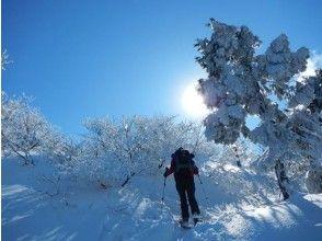 【京都・芦生】関西の秘境!芦生⇒三国峠登頂スノーハイク(ランチ付)
