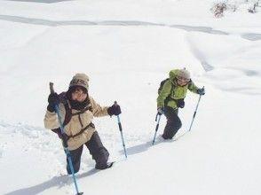 【滋賀・大津】生杉(おいすぎ)原生林スノーシューハイキング(1日コース)の画像