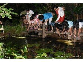 【沖縄・久米島】夜の森を探検!〔ミステリーナイトウォッチング〕の画像