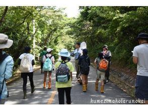 【沖縄・久米島】人と自然のつながる森を歩く!〔ラムサールの森散策〕の画像