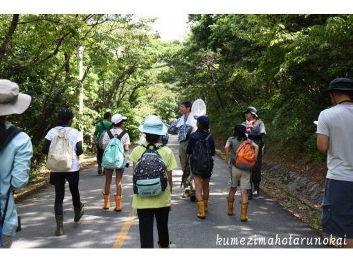 【沖縄・久米島】人と自然のつながる森を歩く!〔ラムサールの森散策〕