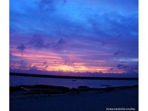 【沖縄・久米島】夜の海で探索!〔オカヤドカリ観察会〕の画像