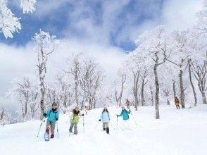 【鳥取・氷ノ山】わかさ氷ノ山スキー場!スノーシュー登山(1日コース)西宮駅より送迎オプションあり