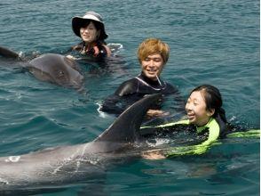 【高知・室戸岬】室戸岬でイルカと泳ごう!〔ドルフィンスイム〕の画像