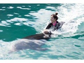 【高知・室戸岬】冬でもイルカと泳げます!〔冬季ドルフィンスイム〕