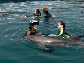 【高知・室戸岬】冬でもイルカと泳げます!〔冬季ドルフィンスイム〕の画像
