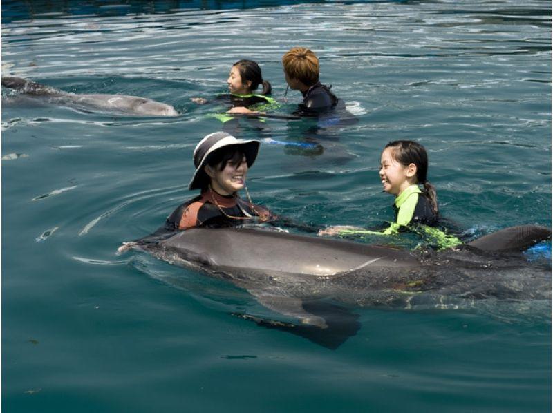 【高知・室戸岬】冬でもイルカと泳げます!〔冬季ドルフィンスイム〕の紹介画像