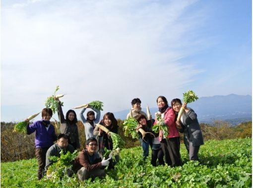 【福島・二本松市】田舎満喫!農家民宿&野菜収穫体験の紹介画像