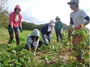【福島・二本松市】自然とつながる夏!野菜収穫(体験編)