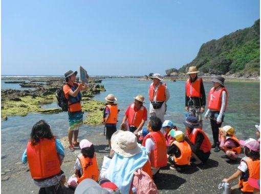 【濡れたくないけど海を楽しみたい…】イノー観察ツアー ★観て触れる天然の水族館!