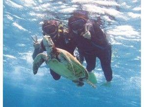 【沖縄宮古島】9年前~営業中!遭遇率100%ウミガメと一緒に泳ぐシュノーケルフォトツアー 団体割有!の画像