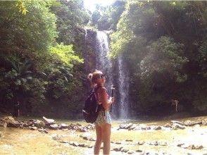 【グループ・カップル・ファミリー・友達】リバートレッキング やんばる国立公園に指定された沖縄本島北部の画像