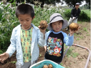 """【Gunma · Maebashi】 spend half a day touching agriculture such as """"seeding"""" and """"harvest"""" ★ Image of rural experience"""