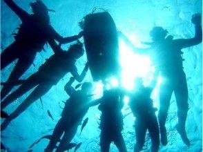 【沖縄・恩納村】ホエール&青の洞窟体験ダイビング