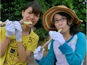 "【Okinawa · Ginza】 Image of experiencing Ginoza culture ""Sugar Cane cutting & brown sugar making experience course"" (Souvenir with brown sugar) image"