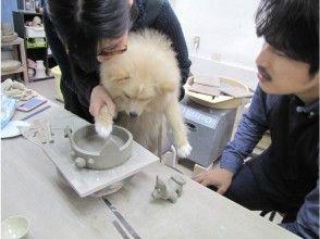 【東京・赤羽橋】オリジナルペットグッズを作ろう!ペットと陶芸体験、当日予約OK!