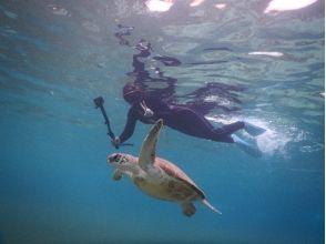 沖縄宮古島で海亀遭遇率100%シュノーケリング&バナナ&マーブル&ジェット&ランチ!団体割有!の画像