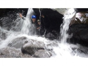 [Tokushima / Mugi] Experience nature with your whole body ★ Shower climbing experience! Short course