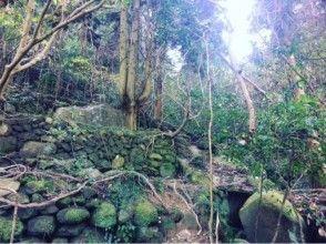 【三重・熊野】知られざる熊野の魅力を探しに行こう〔集落探検・秘境ツアー〕の画像