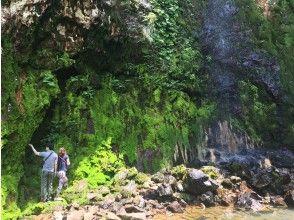 【東京・八丈島】三原山の中腹「唐滝」と「硫黄沼」をガイドの案内と共にめぐるトレッキング!
