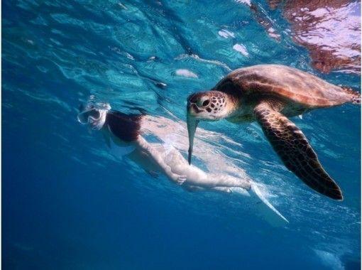 Miyakojima snorkel specialty store umi